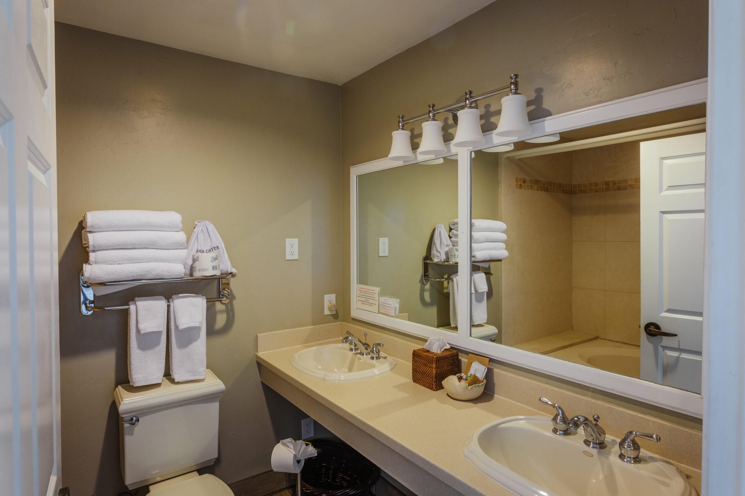 Room 1 Bathroom view