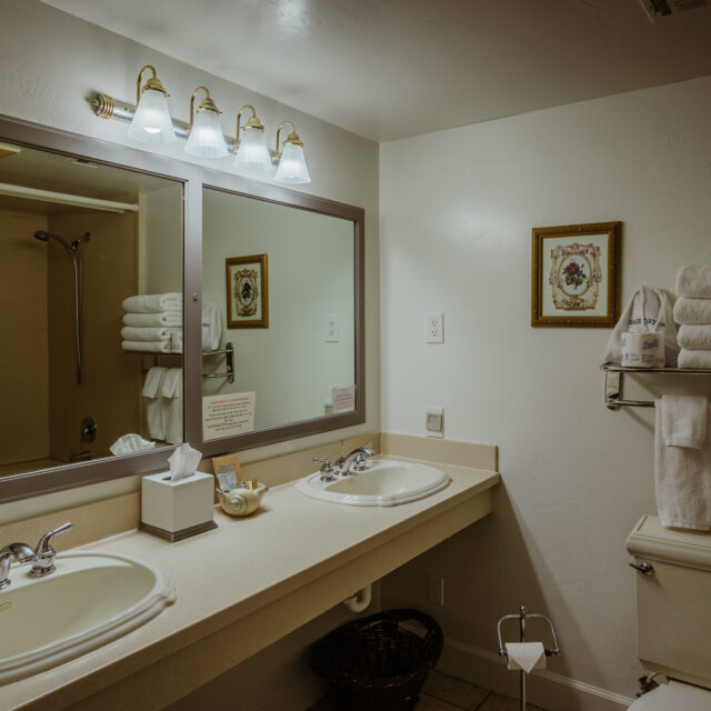 Room 203 Bathroom view