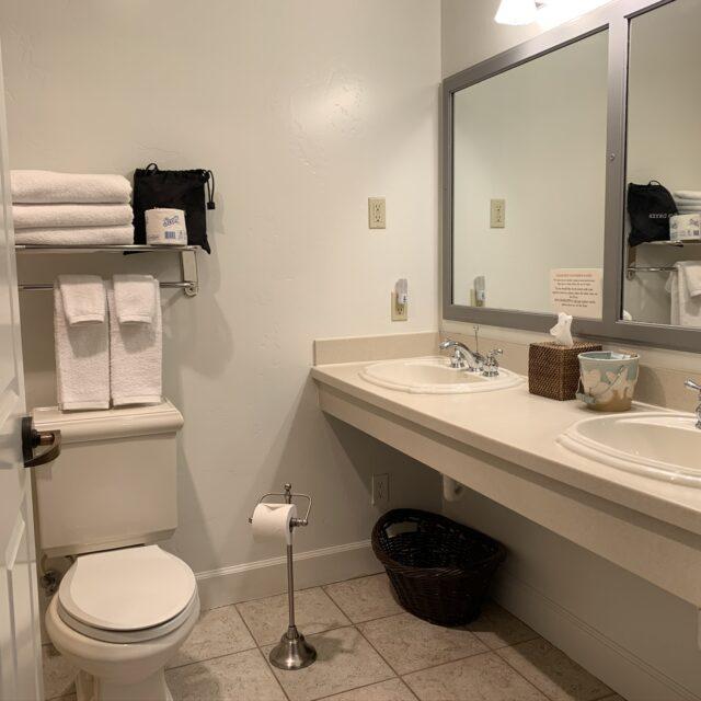 Room 205 Bathroom view 2