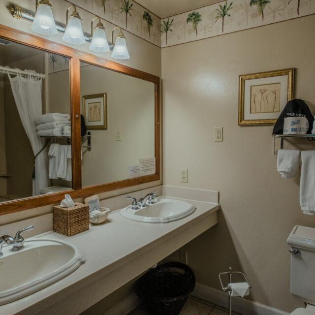 Room 206 bathroom view