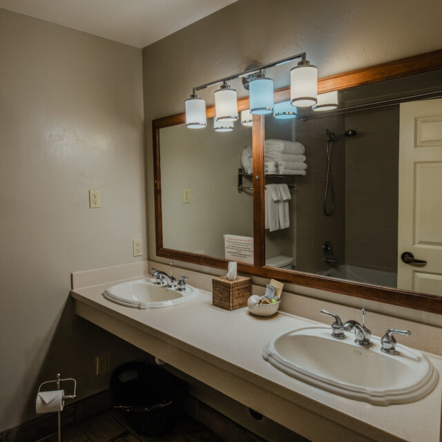 Room 4 Bathroom view